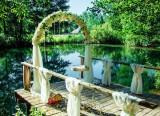 Проведение свадеб и торжественных мероприятий